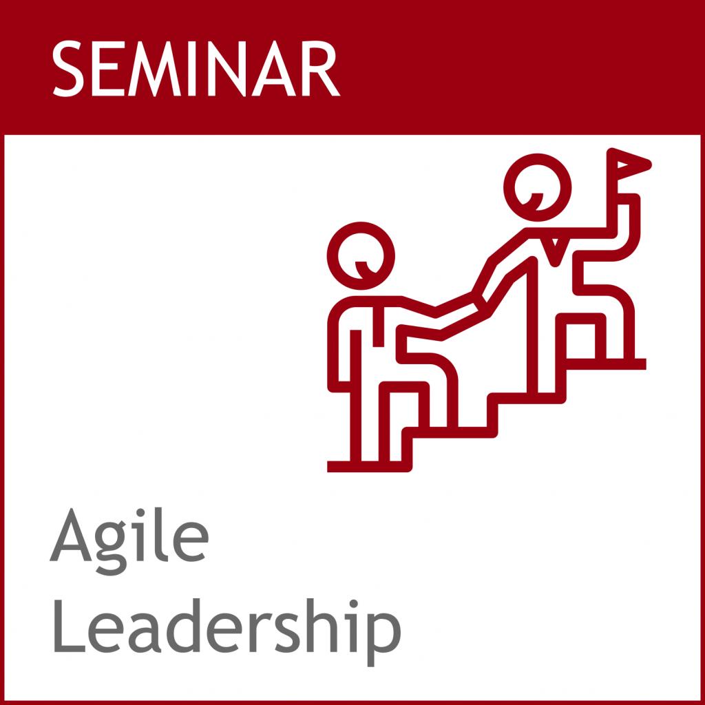 Agile Führung / Agile Leadership Training